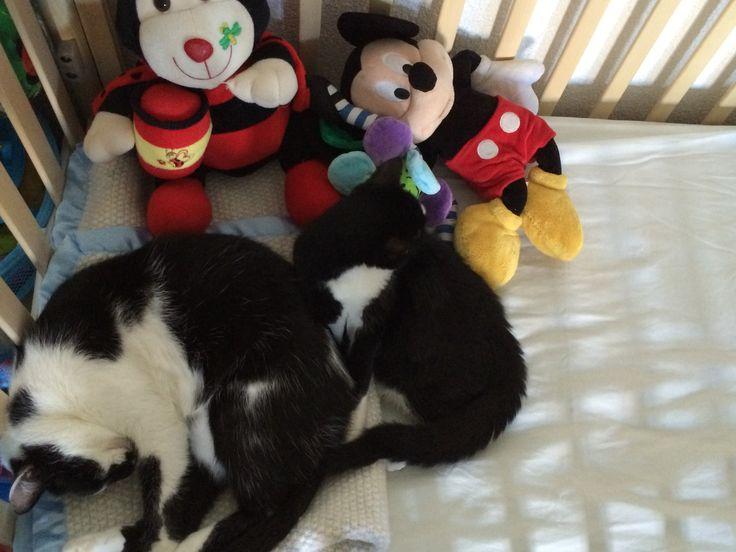 Mickey&Thia