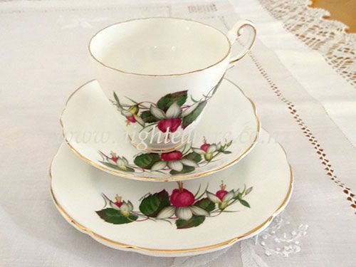 Regency Bone China Fushia cup saucer and plate set (trio)  for hire. Over 400 to choose from highteahire.co.nz