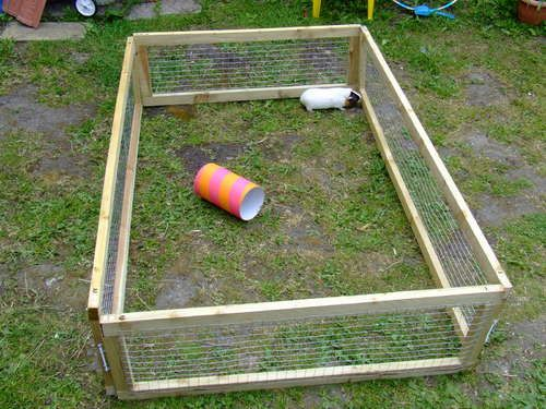 Rabbit play pen. Ours used five 2x4's (cut in half length-wise). Then use one of those to make the uprights(two feet tall). (all boards become 2x2's) One roll of chicken wire will keep the bunnies in. Great for the kids to be able to play with the rabbit in the yard.