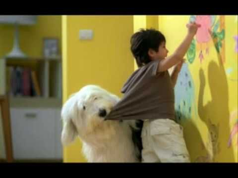 Dulux Paint sheepdog commercial.  Very cute!