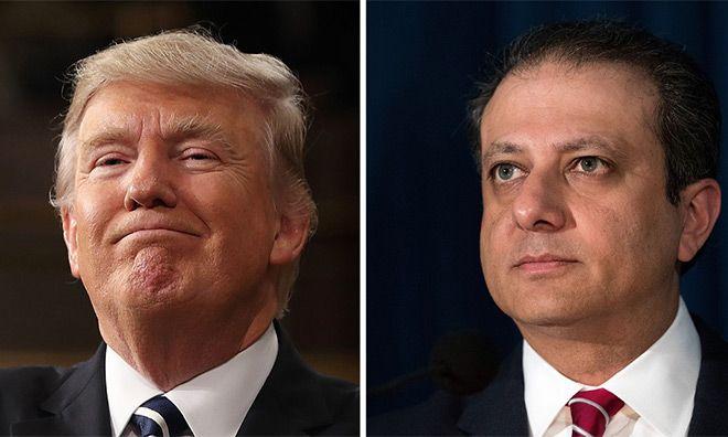 Savcı Bharara'ya not:Trump'ı ara..teşekkür edecek sana.. - http://jurnalci.com/savci-bhararaya-nottrumpi-ara-tesekkur-edecek-sana-79115.html