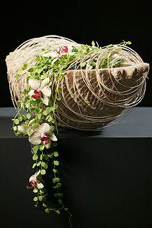 tomas de bruyne floral art