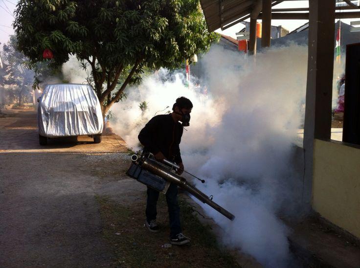 Fogging Nyamuk Untuk Perumahan
