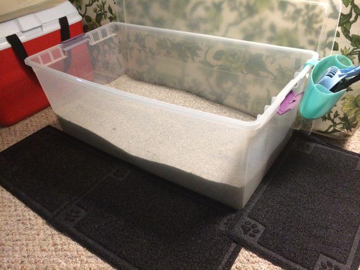 Best 25 Jumbo Litter Box Ideas On Pinterest Diy Litter
