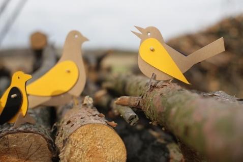 Birds, kartoon _ projekt: Trzy Myszy