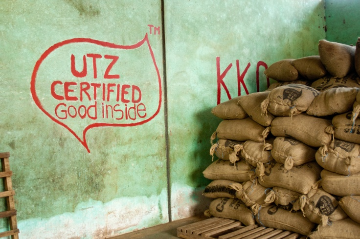 Kwatta works with UTZ Certified to produce cacao of better quality in a sustainable way and guarantee a better future for the cacao farmers and their family.