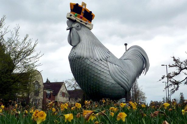 Dorking Cockerel gets royal crown to mark Queen's 90th birthday - Get Surrey + other good photos !