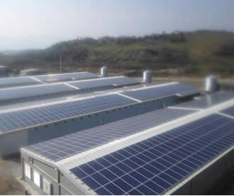 Germencik Tavuk Çiftliği Güneş Elektriği Santrali - Lisanssız Elektrik Üretimi - Enerji Atlası