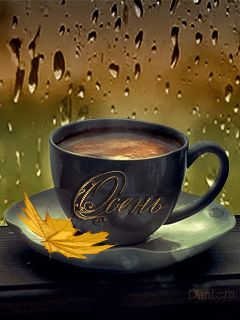 Best 25+ Rain and coffee ideas on Pinterest | Coffee and ...