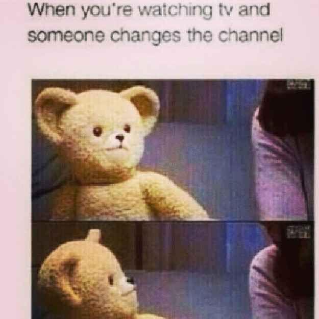 Top 15 Snuggle Bear Memes