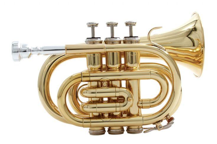 Waldman - Sopro Trompete --- https://www.pinterest.com/lardyfatboy/