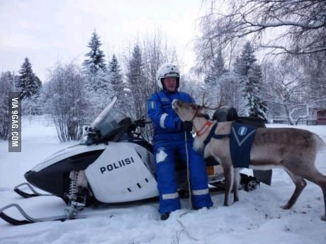 This is a Finnish police with his police reindeer.