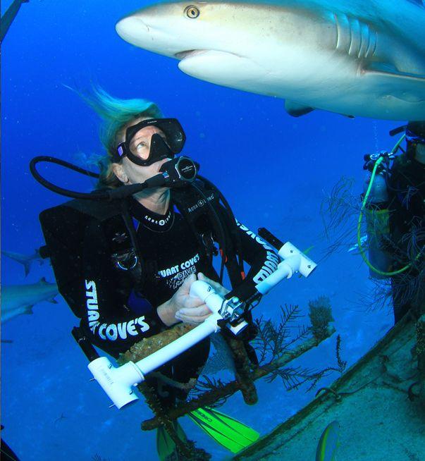 The 25+ best Marine biology careers ideas on Pinterest Marine - marine biologist job description