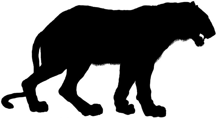 Image result for tiger silhouette