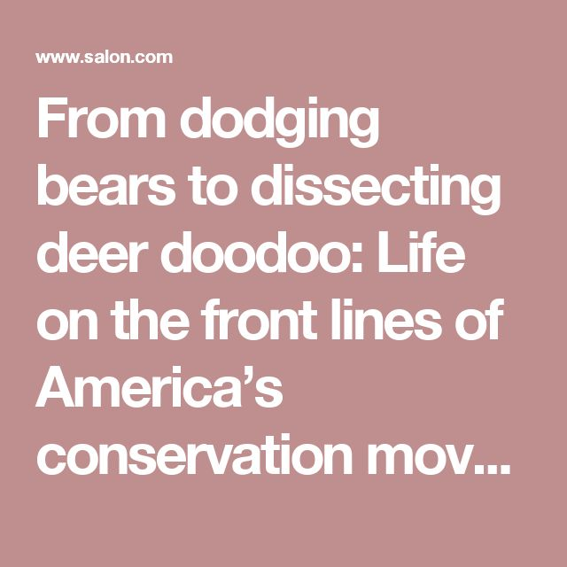 From dodging bears to dissecting deer doodoo: Life on the front lines of America's conservation movement - Salon.com