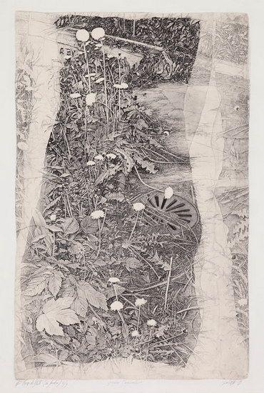 Livio Ceschin(Italian, b.1962) Giardini marginali / Marginal gardens - etching and drypoint 2009