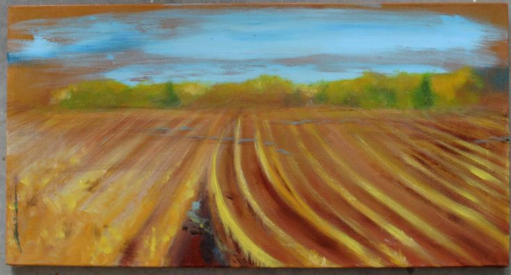 another ripe field15x25250