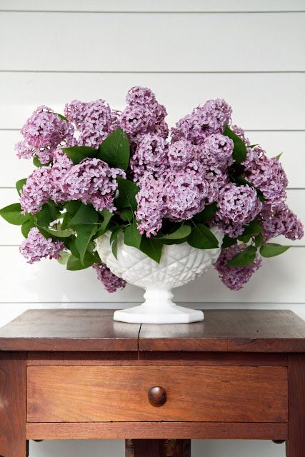 use florist foam in milk glass basket to create this lovely arrangement of lilacs