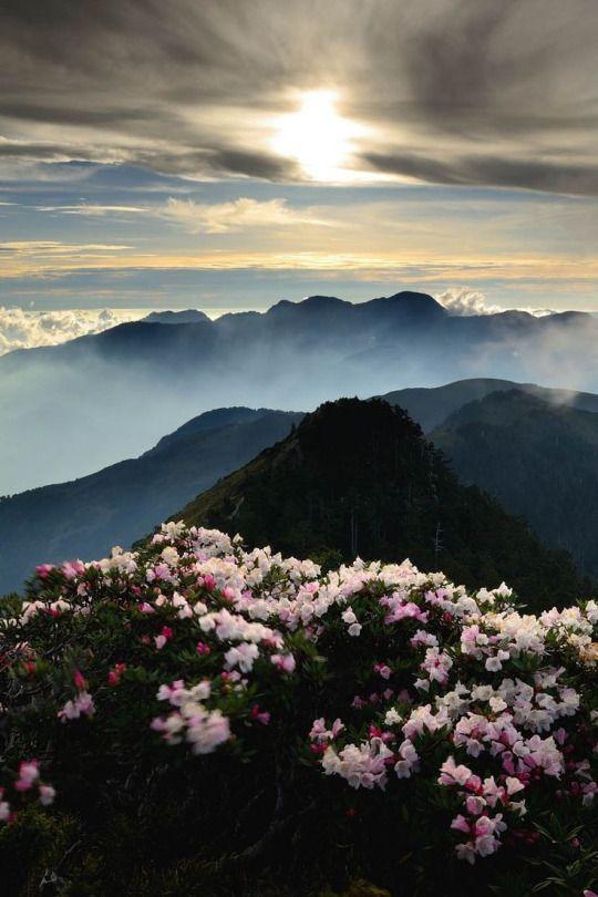 Hehuan Mountain in taroko national park _ Taiwan / by Pauzmantoll