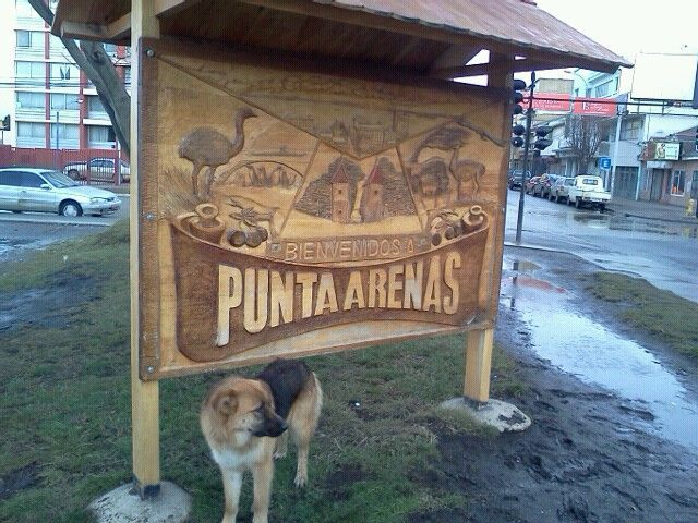Punta Arenas em Magallanes y de la Antártica Chilena