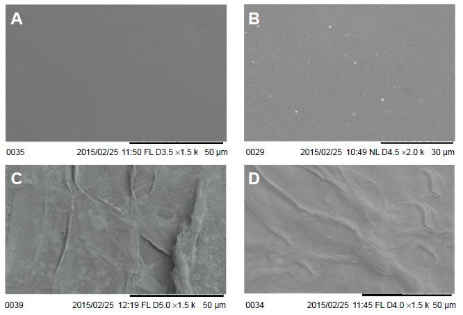 Figure 5 Representative SEM micrographs of control, microwave-treated, and extract-coated mPE samples.
