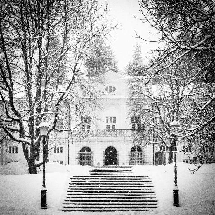 Naš prelestni muzej v Cekinovem dvorcu in zimska idila / Our lovely museum in the Cekin mansion - almost a winter fairytale.