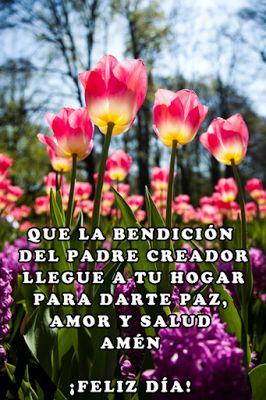 Buenos Dias  http://enviarpostales.net/imagenes/buenos-dias-1617/ #buenos #dias #saludos #mensajes