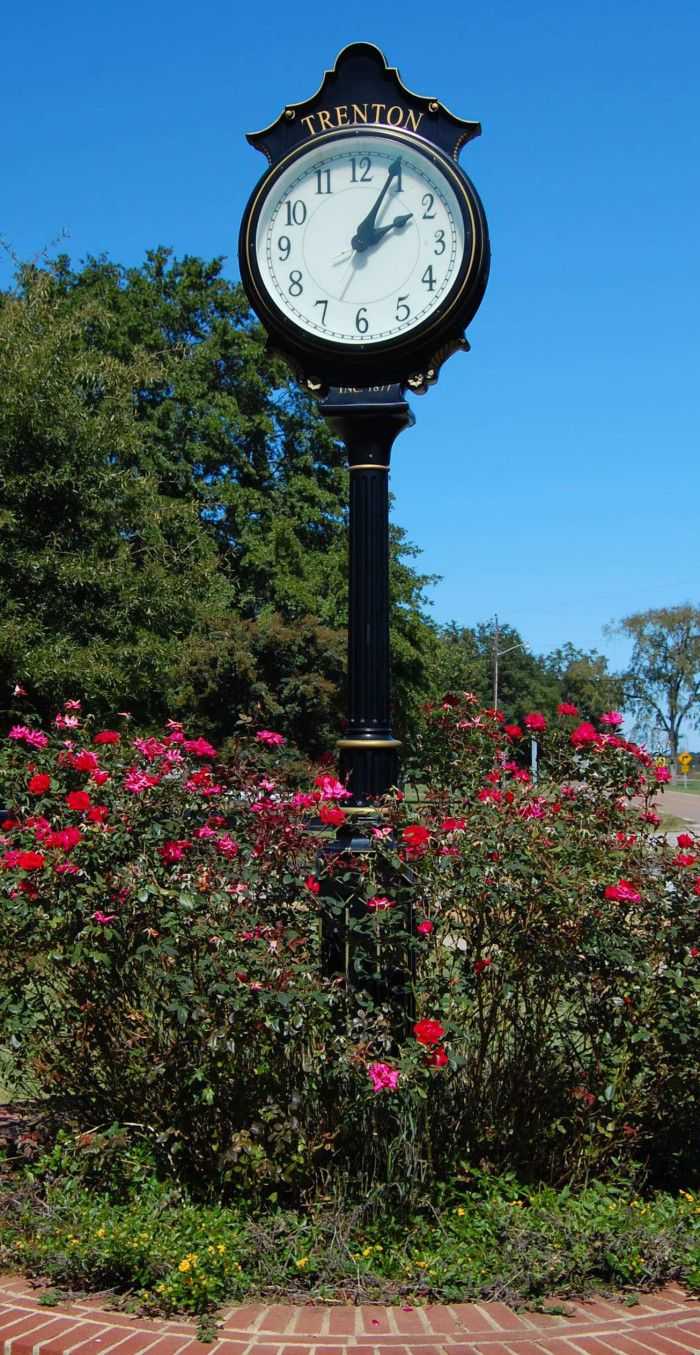 1000 Images About Edgefield Sc On Pinterest Horns