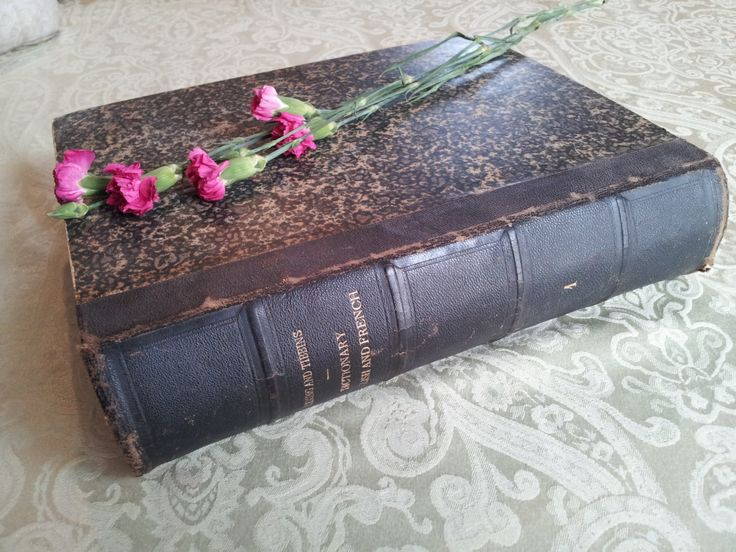 Antique French Dictionary, Vintage, Antique, French Language, French Studies, Paris France, Speak French, Library Decor, Translation, 1860 by Eclectiquesdotorg on Etsy
