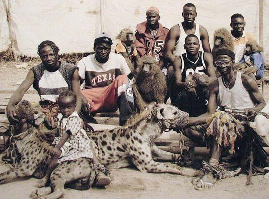 Hyena, pets, Nigeria