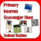 Animal Babies - Internet scavenger hunt  internet scavenger hunts are designed for students to search for specific answers, rather than creating an open ended project