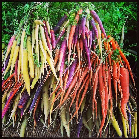 Carrot Rainbow Mix 100% Heirloom/Non-Hybrid/Non-GMO by GetSeeds