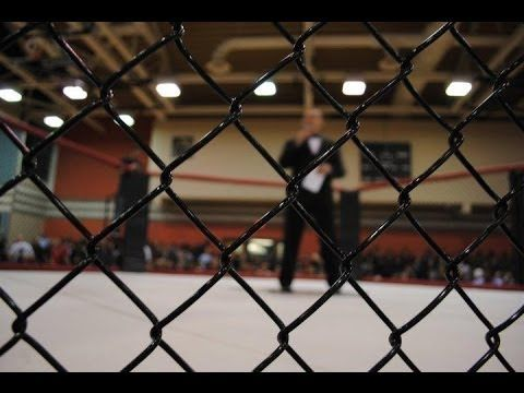 UFC adds women's strawweight division, TUF 20 news
