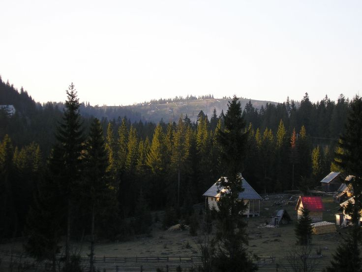 Foto: Eugen Cojocariu