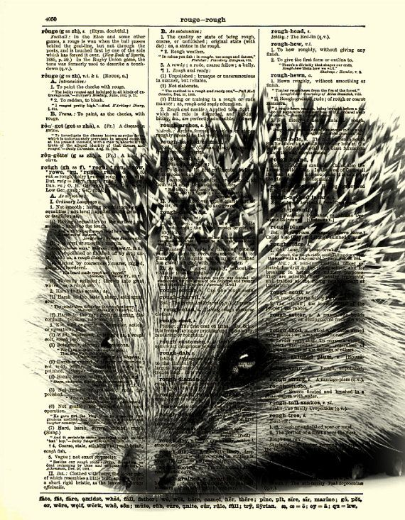 Hedgehog Dictionary Page Fun Hedgehog Art by reimaginationprints, $10.00   So, so adorable!