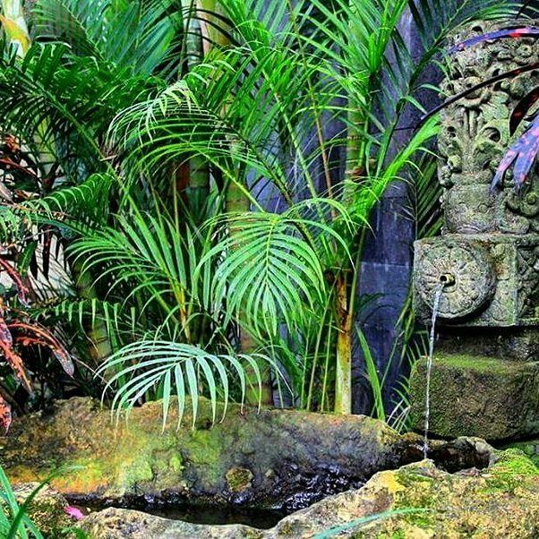 Mixed water feature with Bali motive  statue recycling in to natural stone rock pond. Another feature at Dea Villas. By Bali Landscape Company http://ift.tt/1QzTwns  #pond #waterfeature #statue #rock #softscape #landscape #landscapedesigner #landscapearchitecture #gardenlovers #bali #taman #tropicaldesign #tropicallandscape  #balilandscaper #landscape #landscapecontractor  #landscape_review #gardenideas  #landscapearchitect #deavillas  #gardenideas #gardeninspiration #gardenlove…