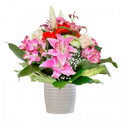 Assa - Flowers Delivery to Australia, Send Fresh Flowers Online from Times Flora