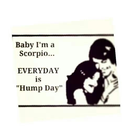 Everyday is hump day....... #scorpio #man #quotes ♏ scorpioquotes.com