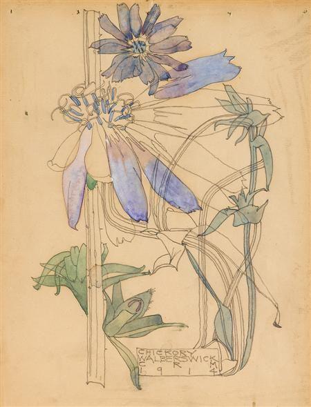 CHARLES RENNIE MACKINTOSH (SCOTTISH 1868-1928) 'CHICKORY' 24.5 X 19CM (9 3/4 X 7¾IN) - SALE 370 - LOT 28 - LYON & TURNBULL
