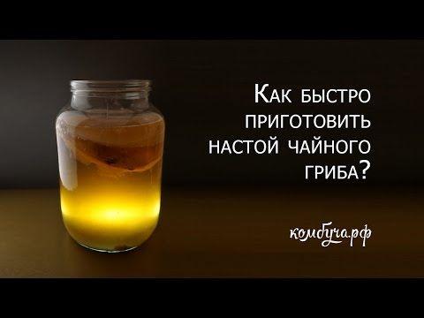 Как быстро приготовить настой чайного гриба?