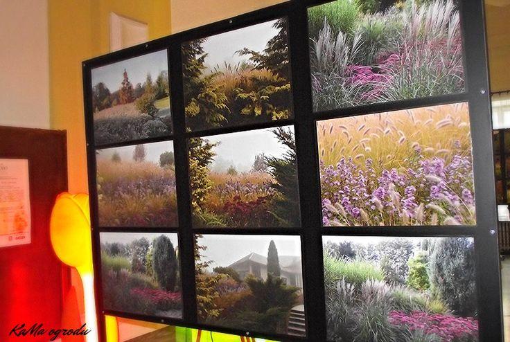 """Wystawa forograficzna - """"Cztery pory roku w ogrodzie"""""""