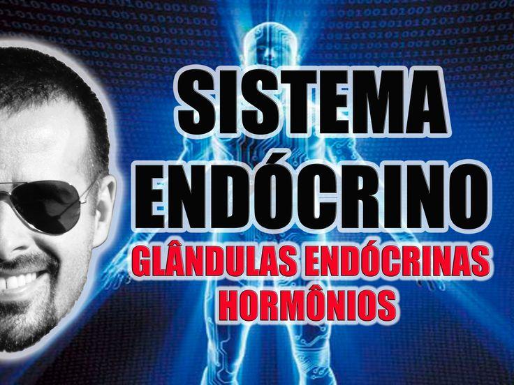 Vídeo Aula 033 - Sistema Endócrino: As glândulas endócrinas e os hormôni...