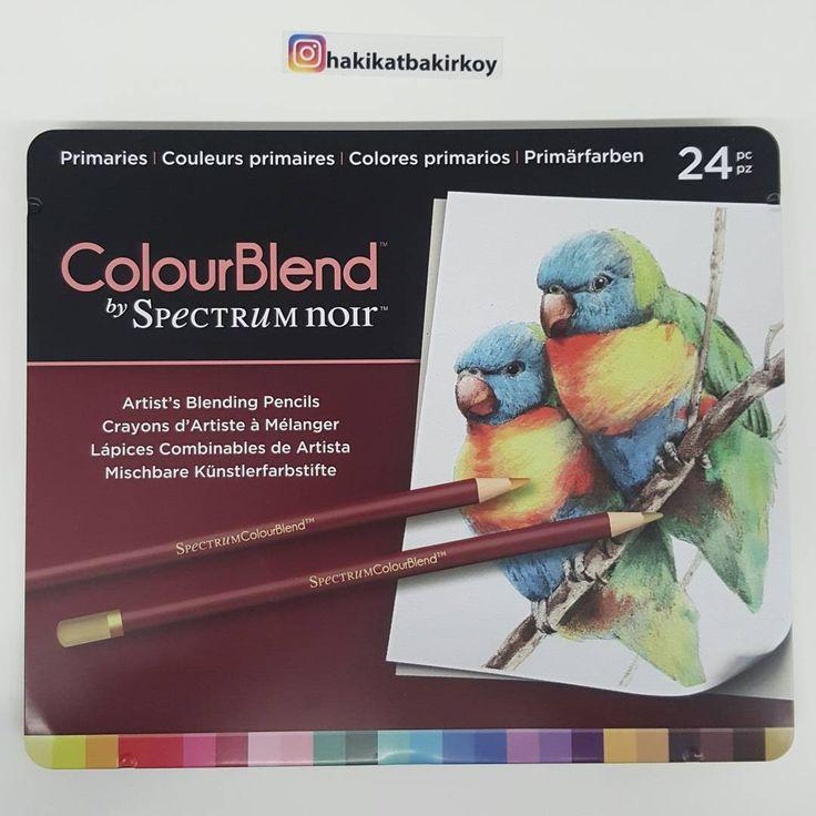 Sizler istediniz, Biz getirdik.�� Daha iyi Çizimler, daha canlı renkler için, Spectrum Noir 24lü ColourBlend Kuruboya Seti 100TL�� Sipariş için instagram DM #spectrum #spectrumnoir #çizim #resim #art #draw #drawing  #bird #kuş #sanat #pencil #boya #paint #kuruboya #sketch http://turkrazzi.com/ipost/1518224758012285777/?code=BUR0V-ehpNR