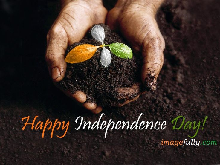 Happy Independence Day 2015 Picture Share On Facebook Wall imagefully. Download Happy Independence Day 2015…