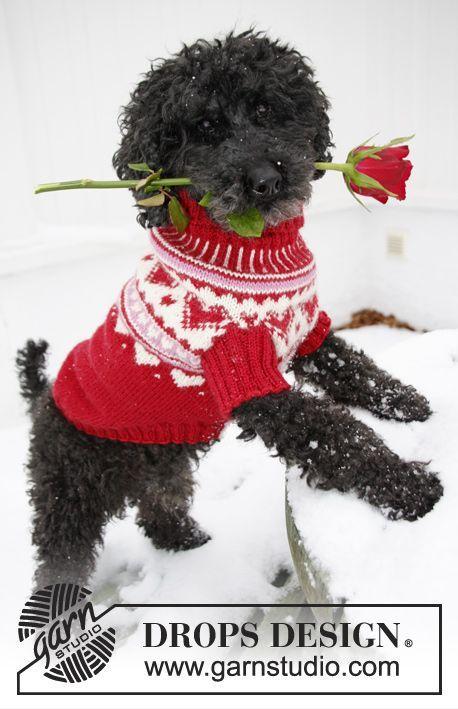 """Strikket DROPS hundegenser til valentine i """"Karisma"""" med hjerter. Str XS - L ~ DROPS Design"""