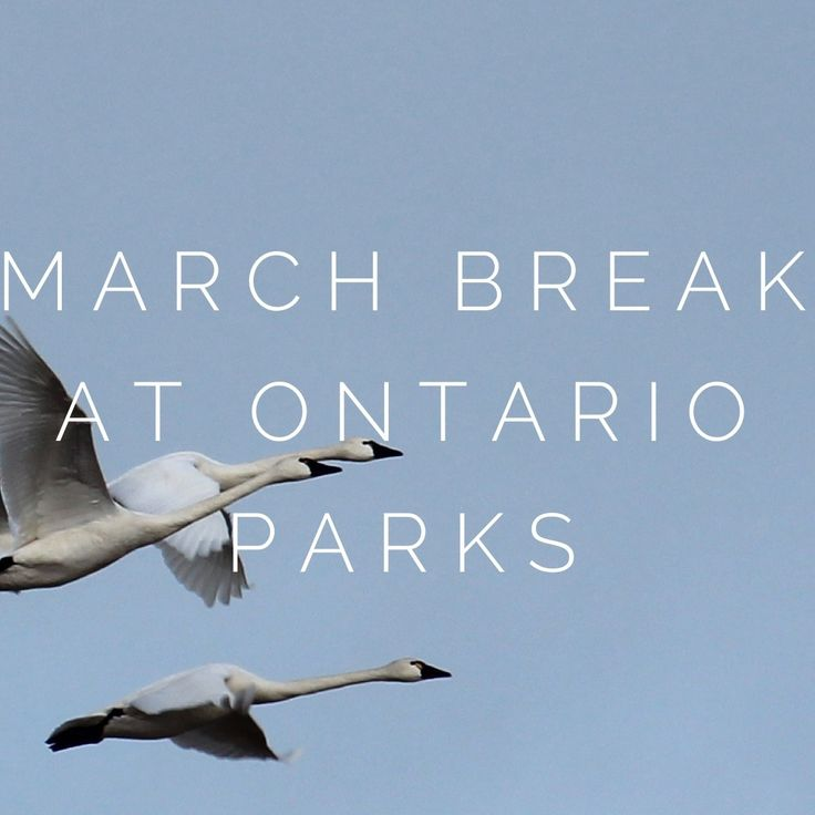 March Break at Ontario Parks