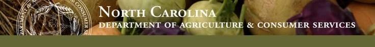 NC Farmers Market!