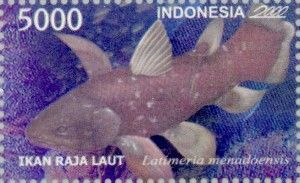 Indonesian Coelacanth as shown on a 2000 Indonesia stamp.