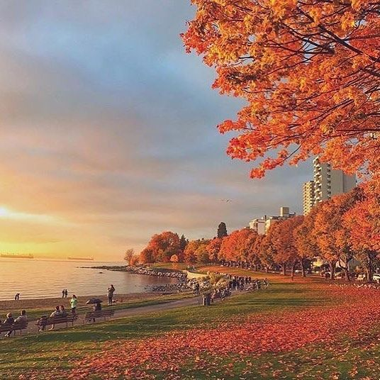 Throwback to one of the perfect autumn sunsets. Do you miss the colors? Photo: @kasraebdn . . #vancityhype #getoutside #discoverglobe #beautifuldestinations #socialrealtor #socialmedia #yvrre #realtor in #yaletown #vancity #vancouverrealestate #theevlist #wp #linkedin #instahub #instagood #love #engelvolkers @vancouver_canada