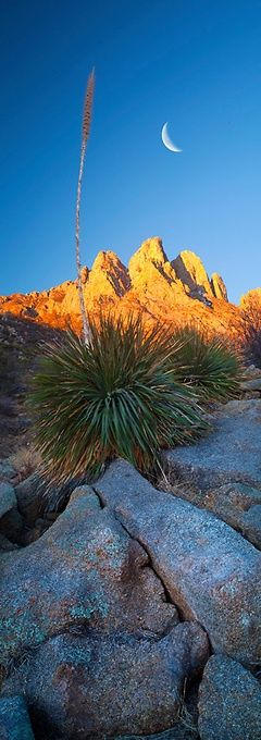 Crescent Dawn Organ Mountains, New Mexico. Jeffrey Murray Photography